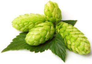 beer_home_971